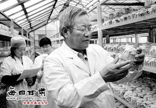 甘肃马铃薯产业的实干家--王一航