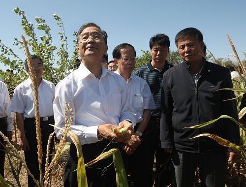 家宝来到赤峰市敖汉旗玛尼罕乡一处受灾绝收的农田里,仔细察看旱
